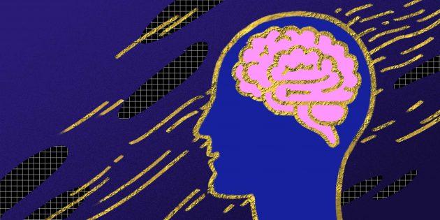 6 мифов об IQ, в которые пора перестать верить