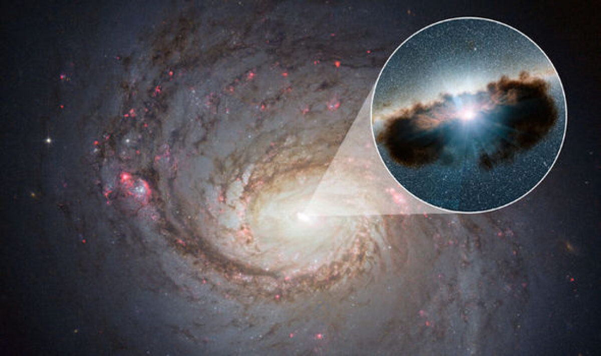 Портал в центре Галактики, квантовая симуляция и мышечные биороботы