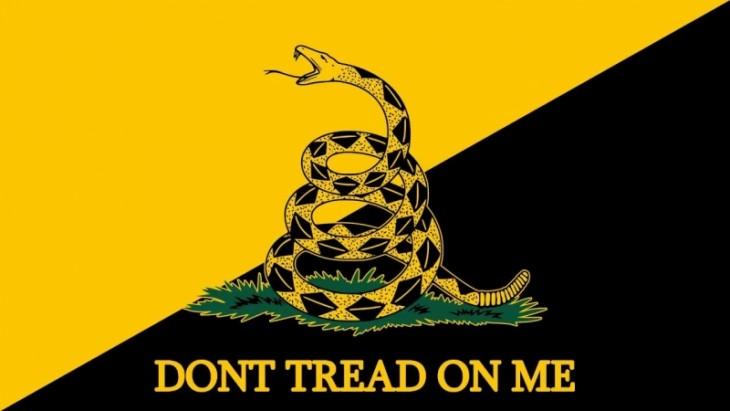 Либертарианцы: странная свобода