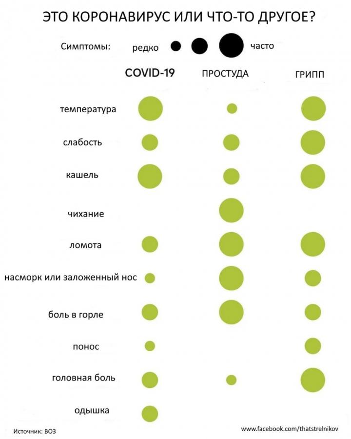 Чем коронавирус отличается от гриппа, стоимость тестирования и удалённое обучение школьников