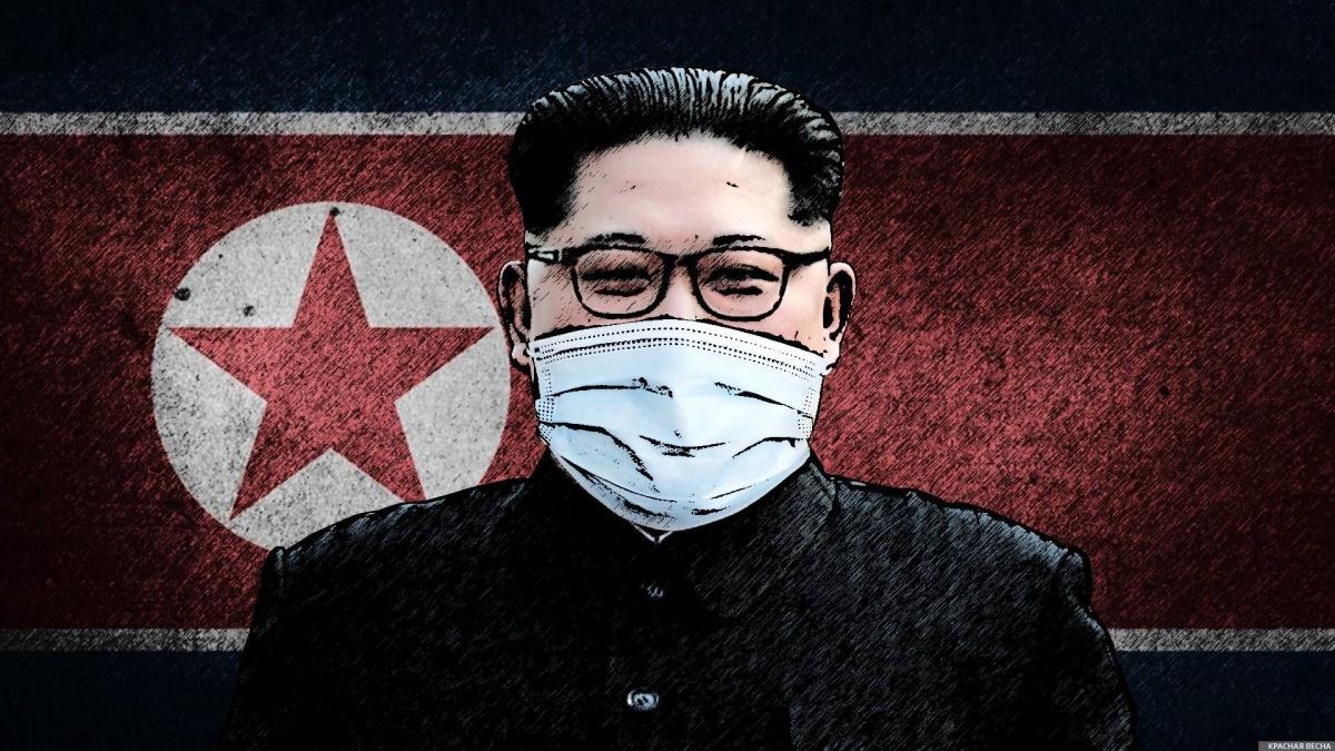 Коронавирус в КНДР, плотность жизни в Южной Корее и расходы стран на науку